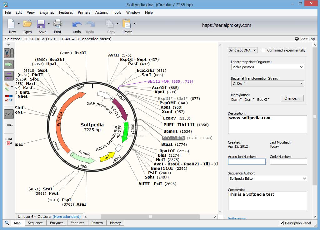 Snapgene Crack 5.2.5 + Serial Key 2021 Free Download