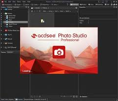 ACDSee Pro 2021 Crack + Activation Key Full Download Latest Version